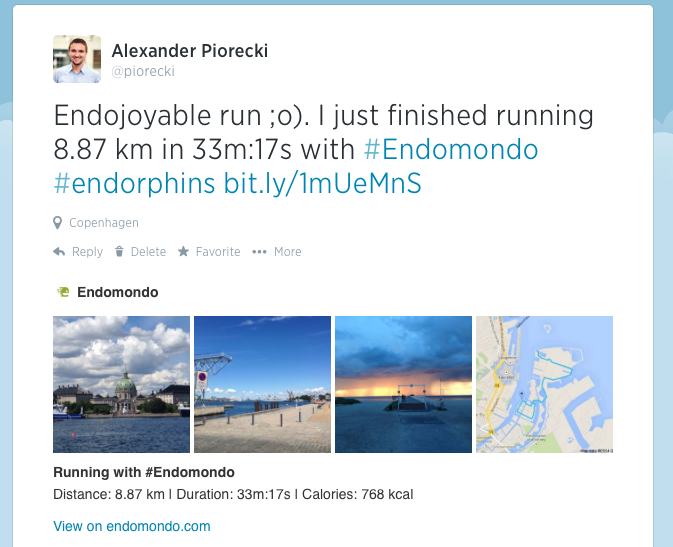 Endomondo Twitter-cards